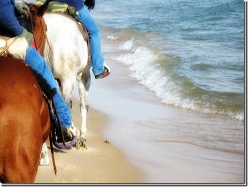 beachIMG_6112_thumb