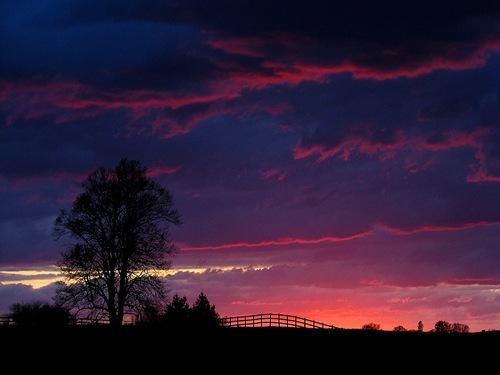 monday sunset pinks IMG_9676